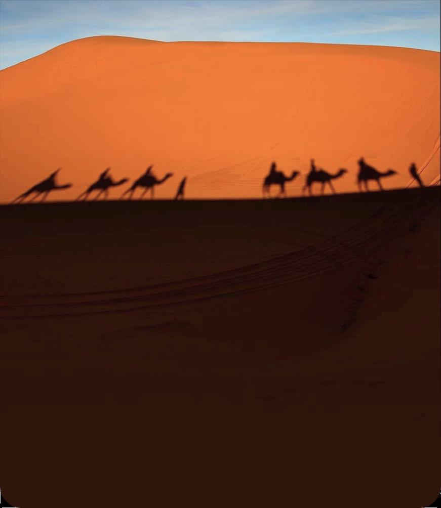 Excursion por el desierto de Marruecos con guia   Marruecos Por ...